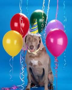 Valpak Celebrates 46th Birthday with $5k Birthday Prize Pack